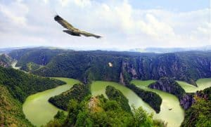 Read more about the article Best Attractions to Visit in Serbia